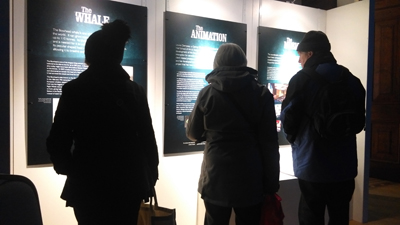 Bowhead at Maritime Museum. Audience members find out more.